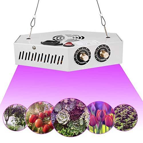 1000W LED Lampada Piante Regolabile Spettro Completo COB Coltiva Luce per Piante Grow Light con Gancio di Corda per Piante Interne Veg e Bloom (230 * 175 * 50 cm)