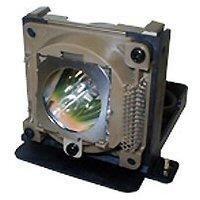 BenQ Lampada Per Pb6110/Pb6210/Pe5120 [Vecchio Modello]