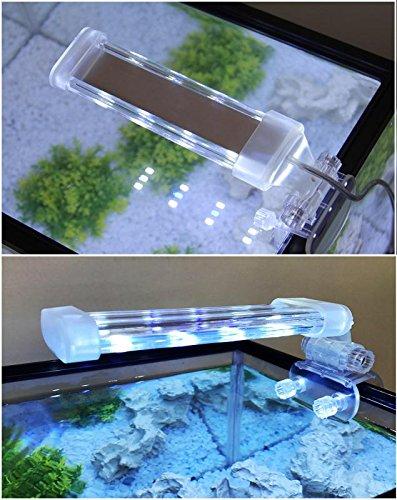 BPS® - Lampada per acquario a LED, illuminazione per piante subacquee, luce bianca e blu, 2 modelli a scelta 4 W/8 W