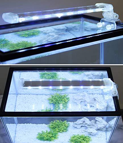 BPS - Lampada per acquario a LED, illuminazione per piante subacquee, luce bianca e blu, 2 modelli a scelta da 4 W/8 W (12 W: 400 x 40 mm) BPS-6169