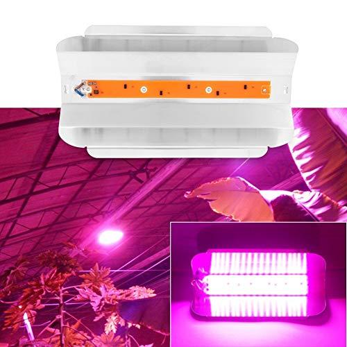 Delaman Coltiva la Luce 30W 50W 80W Piante da Interno PANNOCCHIA LED Growing Light Impianto a Spettro Completo Coltiva la Lampada per Plant Flower Vegetable (capacità : 80W)