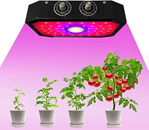 DERASL1000W Lampada per crescita piante a LED a spettro completo, con raggi ultravioletti e infrarossi, adatta per ortaggi e fiori in serra da interni 1000W