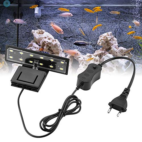 Illuminazione per acquario LED 5 W a clip, lampada per piante d'acqua dolce o mare, acquario, luce impermeabile (luce bianca)