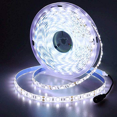 JOYLIT 12V Striscia LED Bianco freddo 5M 300LEDs SMD5050, Flessibile IP65 Impermeabile 6000-6500K Luce Nastro Luminoso per Decorazione di armadio da cucina, Camera da letto