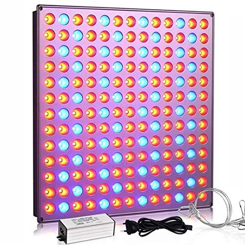 Lampade per Piante YASBED 75w Grow Led Coltivazione Indoor Idroponica Lampada Crescita Luci Piante Illuminazione di Pannello per Luminosa Led per Piante