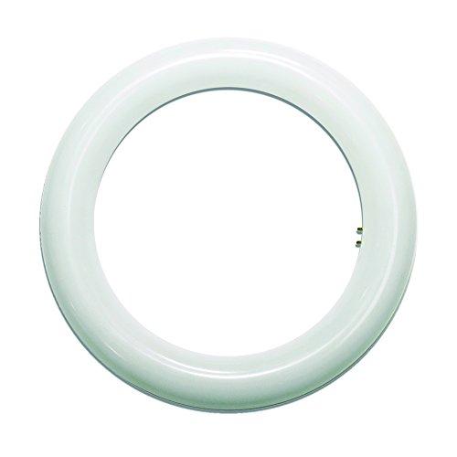 Lighted - Tubo LED circolare, 2G10, 15 W, colore bianco, 215 mm, tubolare, vetro