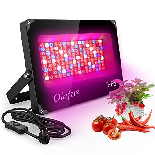 Olafus Grow Light 1000W, Lampada per Piante Coltivazione Spettro Completo di Luci 144 LEDs con 92 Rossi 22 Blu 4 IR 22 Bianco, IP66 Impermeabile Accelerare Crescita Fioritura Fruttificazione…