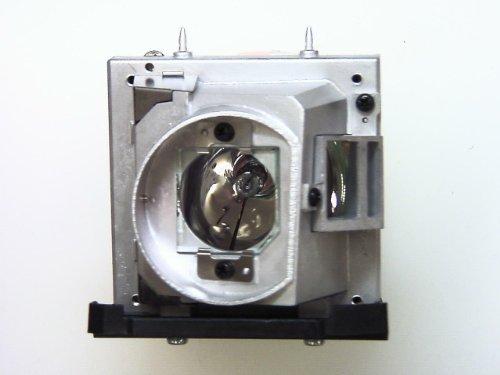 OPTOMA Lampada Originale BL-FU280B / SP.8BY01GC01 per Videoproiettore TW766W