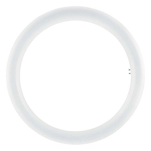 Osram 4058075135482 Lampada, Bianco