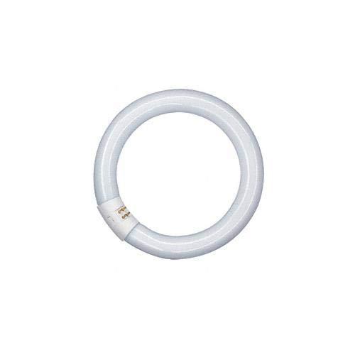 Osram - Circolare tubo fluorescente t9 216 mm, vetro