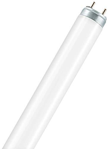 Osram Lumilux Deluxe T8 G13 L 58 W/965 Lampada fluorescente