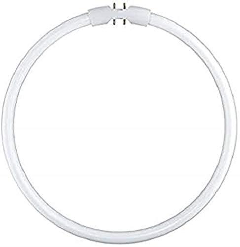 Osram Lumilux T5 FC 2Gx13 22 W/830 Lampada fluorescente