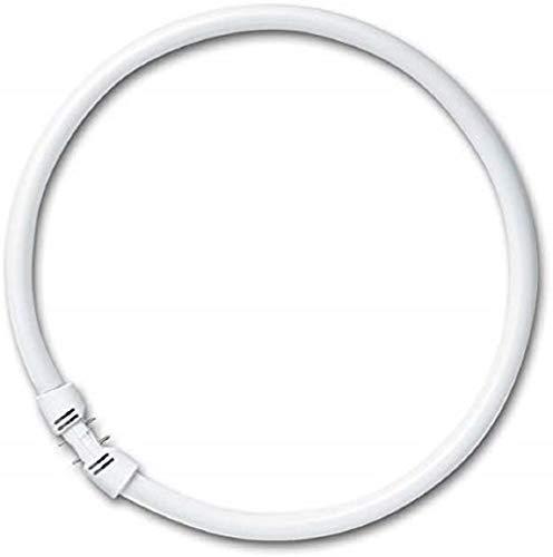 Osram Lumilux T5 FC 2Gx13 22 W/840 Lampada fluorescente