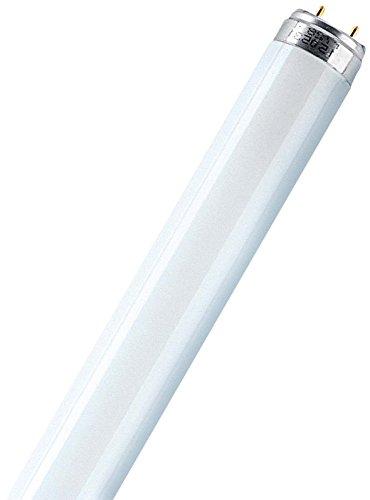 Osram Lumilux T8 G13 L 23 W/830 Lampada fluorescente