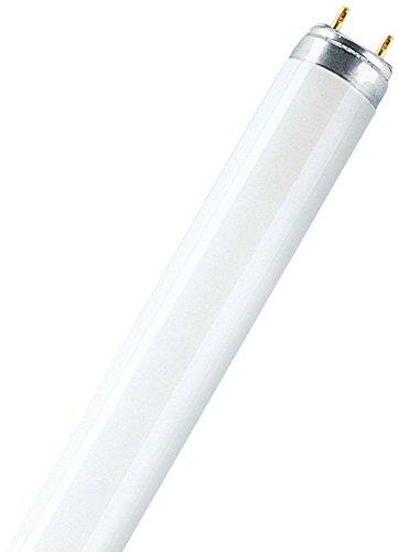Osram Lumilux XT T8 G13 L 18 W/865 Lampada fluorescente