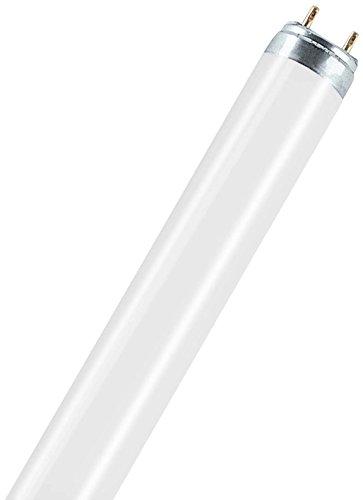 Osram Natura T8 G13 L 18 W/76 Lampada fluorescente