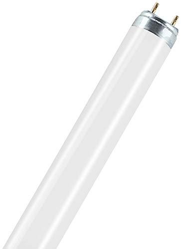 Osram Natura T8 G13 L 58 W/76 Lampada fluorescente