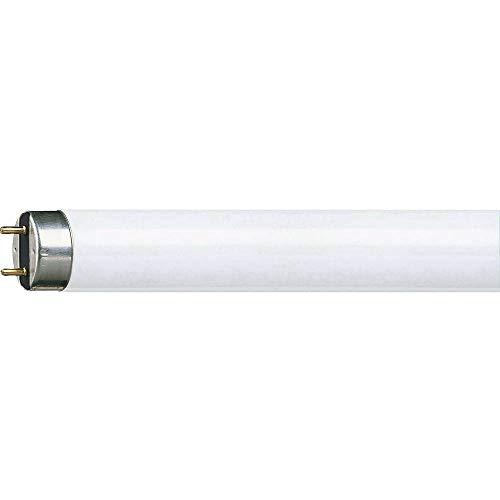 Philips 927920584019 Lampadina tubolare fluorescente, G5, 13-30 W