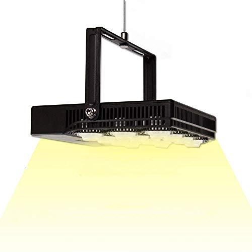 SANSI Lampada per Piante a LED a Spettro Completo da 70W, Luce per Piante Corda sospesa Regolabile e Spina EU, Lampada di Crescita a LED IP66 per Piante da Appartamento, Serre, Coltura idroponica