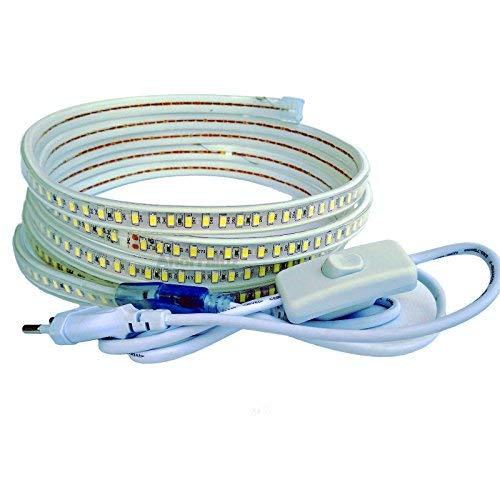 Striscia LED da 220 V 5730 120 LED/m con interruttore, impermeabile bianco freddo o caldo impermeabile IP67 strip 5630 (3 metri, bianco freddo)