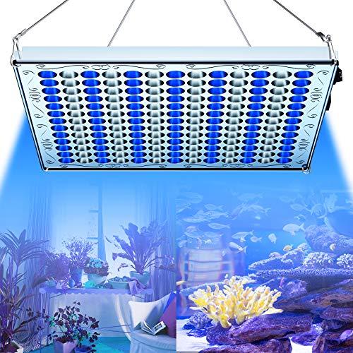 TOPLANET Lampada per Piante, 75W Lampada di Crescita sa LED a Spettro Bianco e Blu, Luce Coltivazione Sospesa con Gancio in Metallo per Piante da Interno e Acquatiche