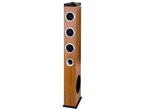 Trevi XT 10A8 BT Soundtower Altoparlante Speaker Amplificato a Torre 2.1, USB, SD, AUX-IN, Connessione Wireless Senza Fili Bluetooth, Presa USB CHARGE, Telecomando Full Control, Color Legno