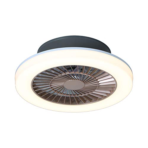 Ventilatore da soffitto con luce e telecomando,Ventilatore A Soffitto Con Lampada,75W LED Dimmerabile Plafoniera Ventilatore Con Luce Velocità Del Vento Regolabile,Illuminazione Del Ventilatore,Ø50cm