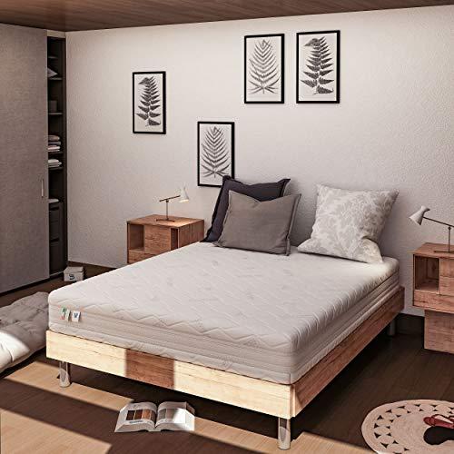 Baldiflex Emporio Materasso Matrimoniale Memory Plus Top Air Misura 160 x 190 x 25 cm Ergonomico 7 Zone Differenziate Sfoderabile Silver Safe