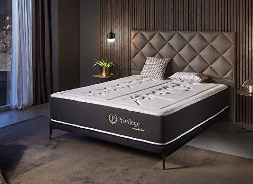 Naturalex | Privilege | Materasso Memory Matrimoniale 160x200 cm | Gamma per Hotel Ultra Comfort | 25 cm | 7 Zone in Lattice HR | Ultima Tecnologia con Sistema Antiaffossamento | Auto Ventilante