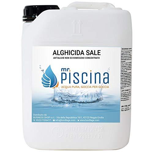 MrPiscina Antialghe Piscina ALGHICIDA Sale - Concentrato Non schiumogeno (10)