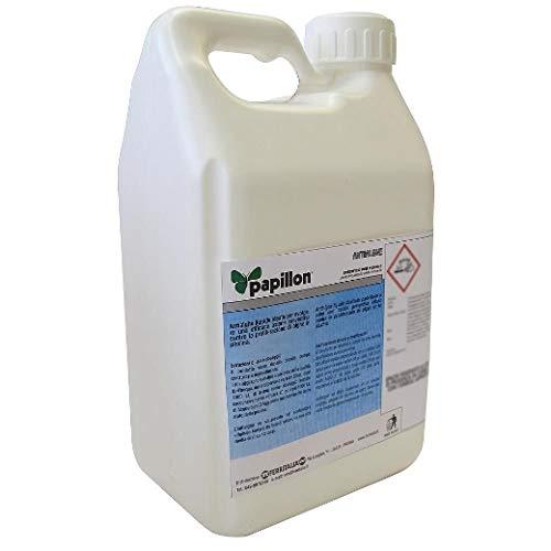 PAPILLON Alghicida Per Piscina Liquido Anti Alga per Piscina (5 kg